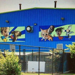 norfolk animal care mark wroblewski mural