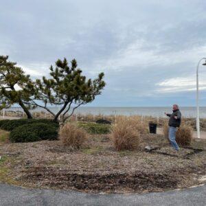 Ocean View Coastal VA Plein Air Partnership Match Project